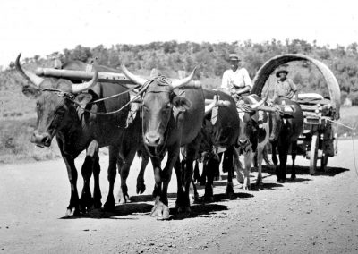 An_Ox_Wagon_in_the_Transvaal_-ID-48555-_Wikipedia